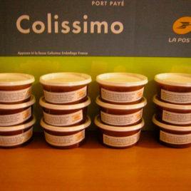 A. Lots de  pots en plastique de 230 gr